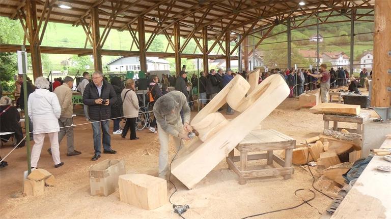 Nouveautés au Festival de Sculpture