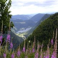 Le Routard des Hautes Vosges vient de sortir