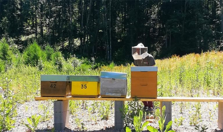 DE Buyer prend soin de l'eau et des abeilles